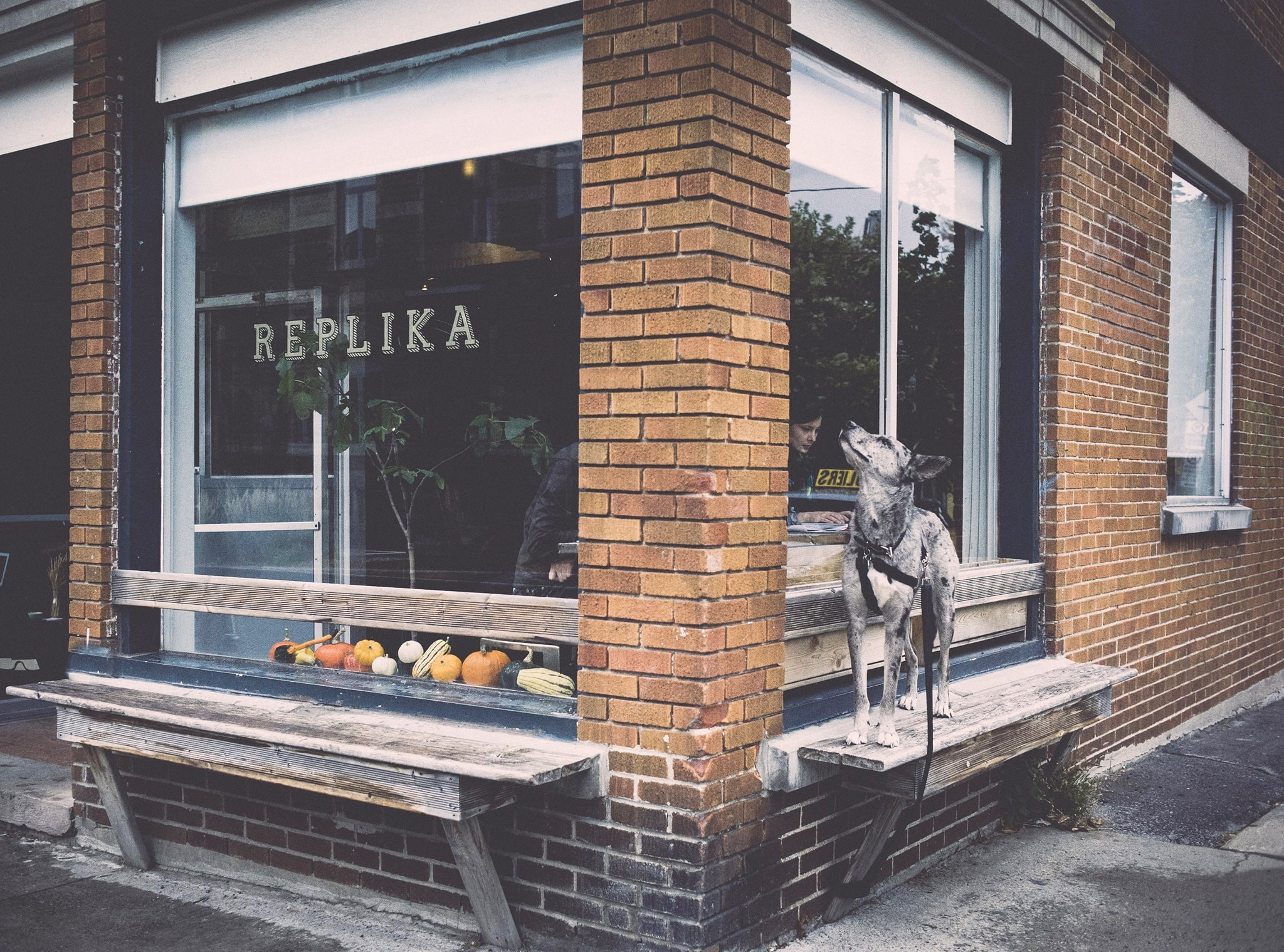 cafe-replika-cafe-turc-rachel-est-8