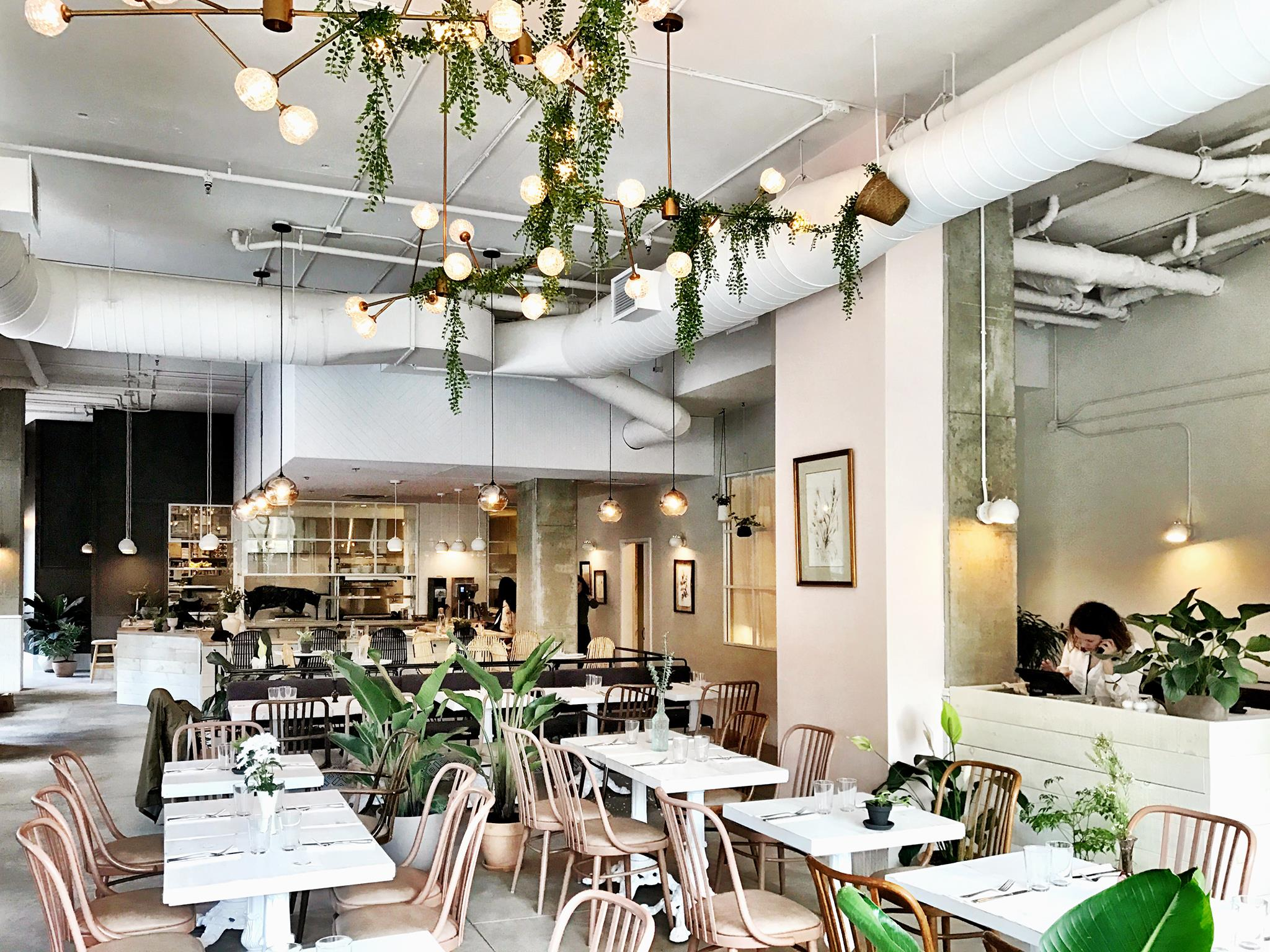 Restaurant m lisse la superbe adresse du vieux montr al for Restaurant la cuisine dax