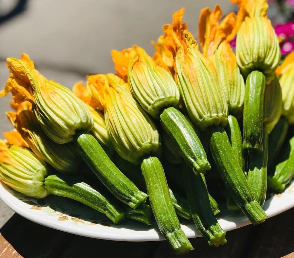 fleurs de courgette montreal