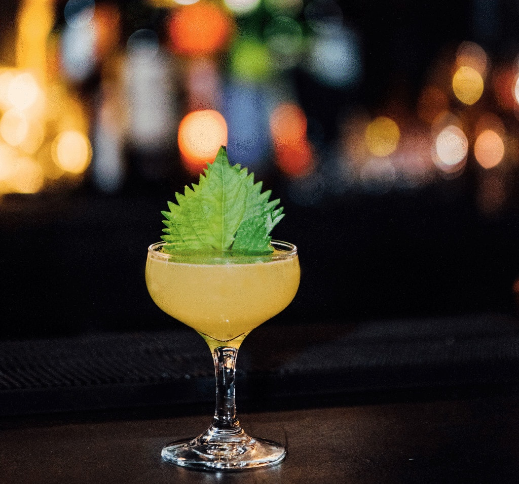 meilleurs cocktails montreal